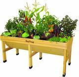 Veg Trug Raised Bed