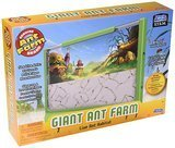 Uncle Milton Giant Ant Farm New Design Kit