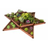 Frame It All Sienna Star Raised Garden